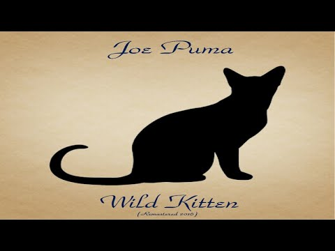 Joe Puma – Wild Kitten (Full Album)