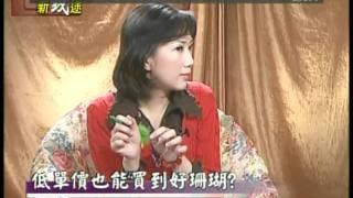 中華國寶-珊瑚(5)