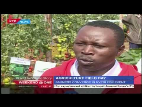 Farmers join to mark the annual agricultural field day in Nyeri County