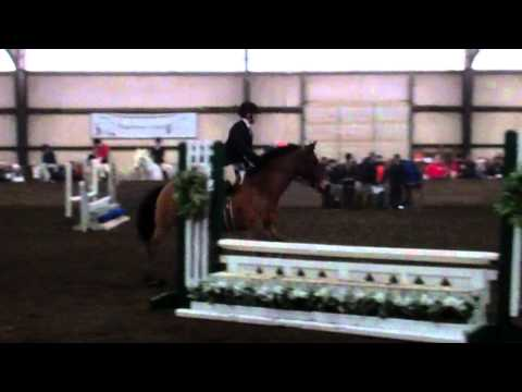 Joey Fink's Second-Place Ride in Open Fences - 1/25/14
