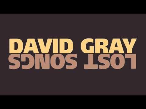 David Gray - \