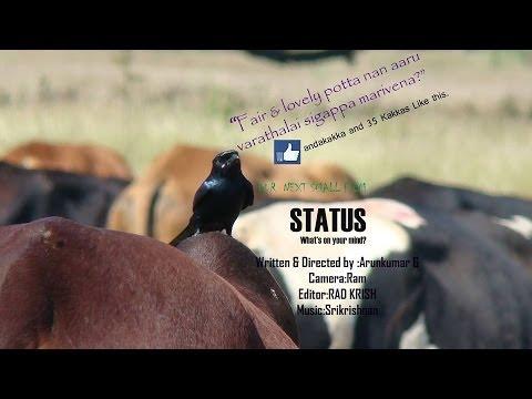 Status Short film short film