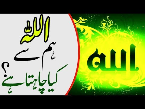 Quotes of Allah God Quotes About Life The Best Quotes of Allah in Urdu and Hindi