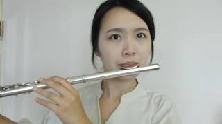 Yoon Mirae尹美萊 - Always《Descendants Of The Sun太陽的後裔 OST》-----Flute cover by Fanny