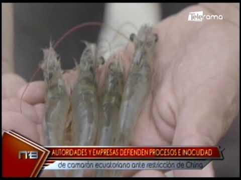 Autoridades y empresas defienden procesos e inocuidad de camarón ecuatoriano ante restricción de China