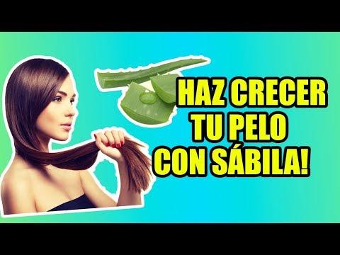 TRATAMIENTO DE SABILA PARA EL CABELLO / TREATMENT OF ALOE VERA FOR THE HAIR