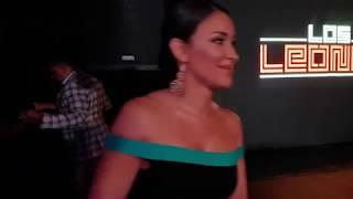 Película Los Leones de Ozuna y Clarissa Molina: Conoce los Detalles!