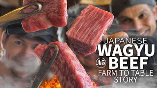 Video Japanese Wagyu Beef Story (from Farm to Table) ★ ONLY in JAPAN MP3, 3GP, MP4, WEBM, AVI, FLV Juni 2019
