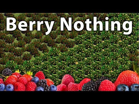 Berry Nothing!?