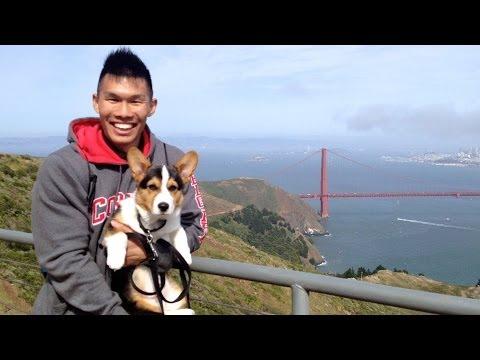 CORGI PUPPY EXPLORES SAN FRANCISCO – Life After College: Ep. 347