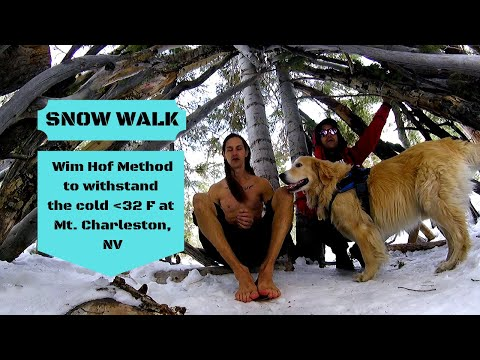 Wim Hof Breathing to Withstand the Snow @ Mt. Charleston, NV by Shaun Suller- Gyoga