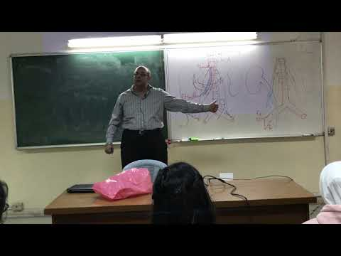 UGS Anatomy Lecture #5 - Dr Ahmed Salman
