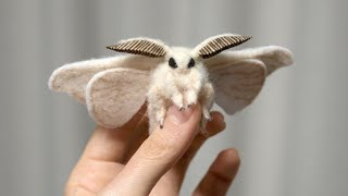 21 Most Incredible Moth Species by Epic Wildlife