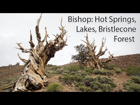 Exploring Bishop, CA: Hot Springs, Lakes & Ancient Bristlecones