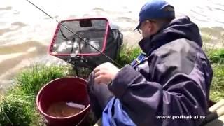 Ловля весеннего карпа на фидер (часть 2)