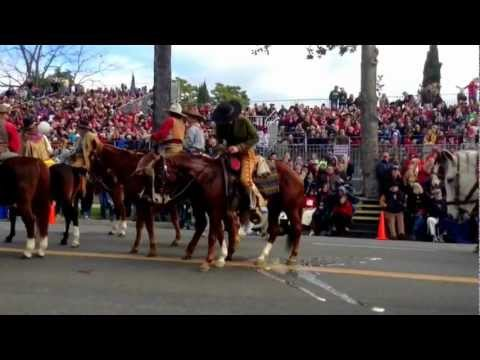 Horse Pees At The Rose Parade Pasadena 2013