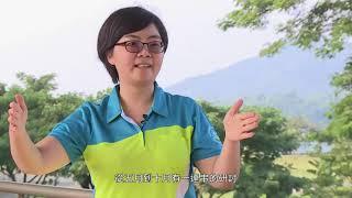 2020曾文水庫大壩安全風險分析(中文版)