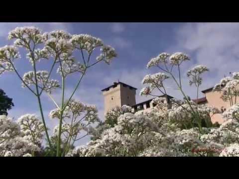 La Rocca di Angera vista dai lettori