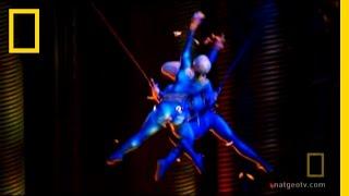 Video Cirque du Soleil Stage Repair | World's Toughest Fixes: Fixing Vegas MP3, 3GP, MP4, WEBM, AVI, FLV Agustus 2018