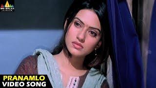 Andhrudu Video Songs - Pranamlo Pranamga