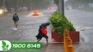 Nông nghiệp | Tin mới nhất: Siêu bão Mangkhut suy yếu, Bắc Bộ mưa lớn
