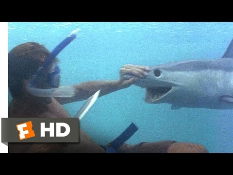 The Beach (3/5) Movie CLIP - A Shark Tale (2000) HD