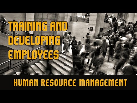 Training and Developing Employees l Human Resource Management