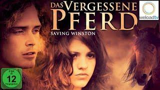 Das vergessene Pferd - Saving Winston - Trailer