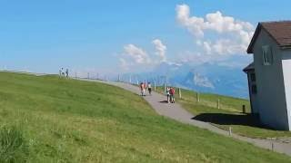 スイス発  快晴日のリギ・クルム山頂は絶景!【スイス情報.com】