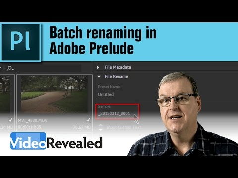 Batch renaming in Adobe Prelude