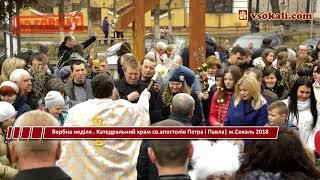 Вербна неділя . Катедральний храм св.апостолів Петра і Павла | Сокаль 2018