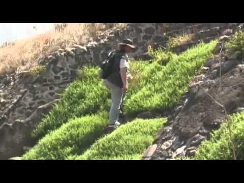 Загадки Древних Построек Мексики (Часть 1) - Документа (видео)