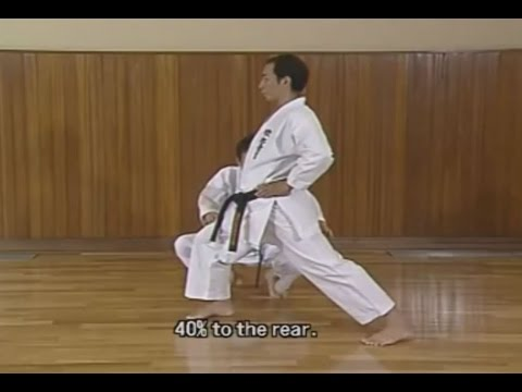 Karate stances  Wikipedia