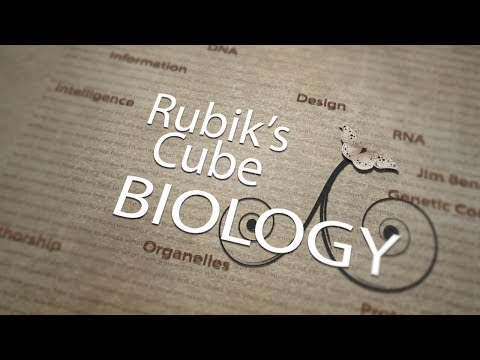 Rubiks Cube Biology
