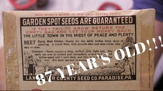 SPROUTING 87 YEAR OLD VEGETABLE SEEDS - Resurrecting Lost Genetics