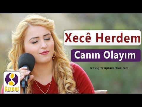 Xecê Herdem Canın Olayım (Akustik) (видео)
