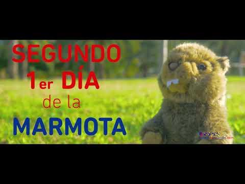 La marmota española Manolo predice que la primavera se anticipará este 2019