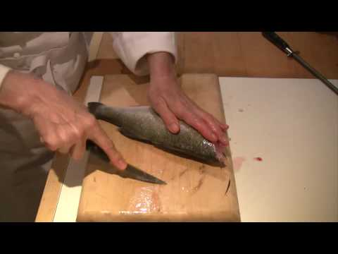 How to scale, gut and fillet a fish