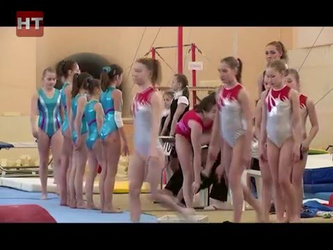 В спорткомплексе «Манеж» проходят чемпионат и первенство СЗФО по спортивной гимнастике