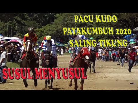 PACU KUDO, PACUAN KUDA PAYAKUMBUH 2020