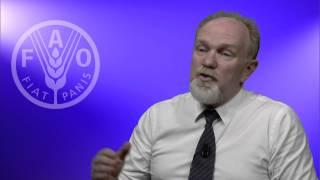 FAO Deputy Director on Voluntary Guidelines technical seminar