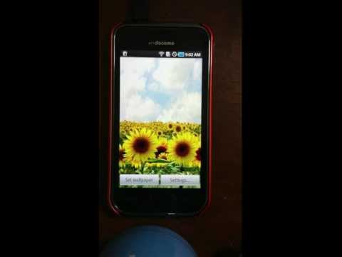 Video of Sunflower LW Free + weather