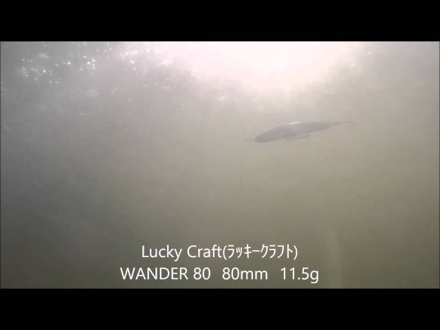 Lucky Craft(ラッキークラフト) WANDER(ワンダー) 80水中動画 横と上からのアングルです ルアー シーバス 釣り Gopro