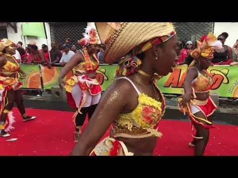 Parade carnaval  à Saint-Pierre (Mardi gras)