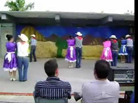 El Tololoche Chicoteado 201vesp