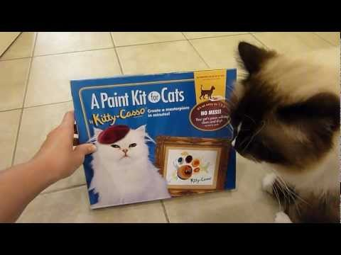 0 Art Casso Paint Kit for Cats Product Review
