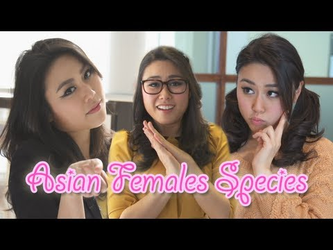 asian - From kawaii to aegyo, follow Dan as he discovers the different Asian female species. Watch Asian Female Species 2: http://e.ntd.tv/144B3oR Watch the Asian Ma...