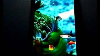 Freshwater aquarium Wallpaper YouTube video