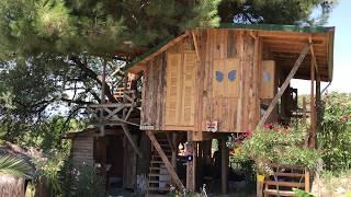 Muğla'nın Seydikemer ilçesinde yaşayan Yusuf Soku'nun kesmeye kıyamadığı çam ve meşe ağacının arasına yaptığı ahşap ev, görenlerin dikkatini çekiyor.