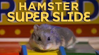 Tiny Super Slide in Hamsterland by AprilsAnimals